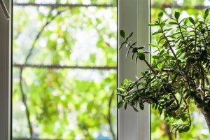 Pembroke Pines Impact Windows